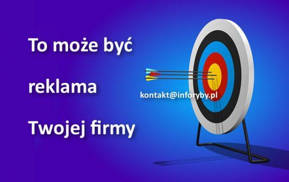 Skontaktuj się z nami kontakt@inforyby.pl